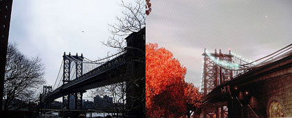 Manhattan Bridge vs Algonquin Bridge